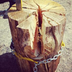 splitz all best wood splitter safe way split log firewood
