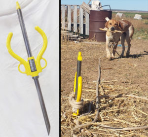 pristine-pet-anchor-animal-dog-tie-out-tether-insure-safety-portable-ground-anchoring-device